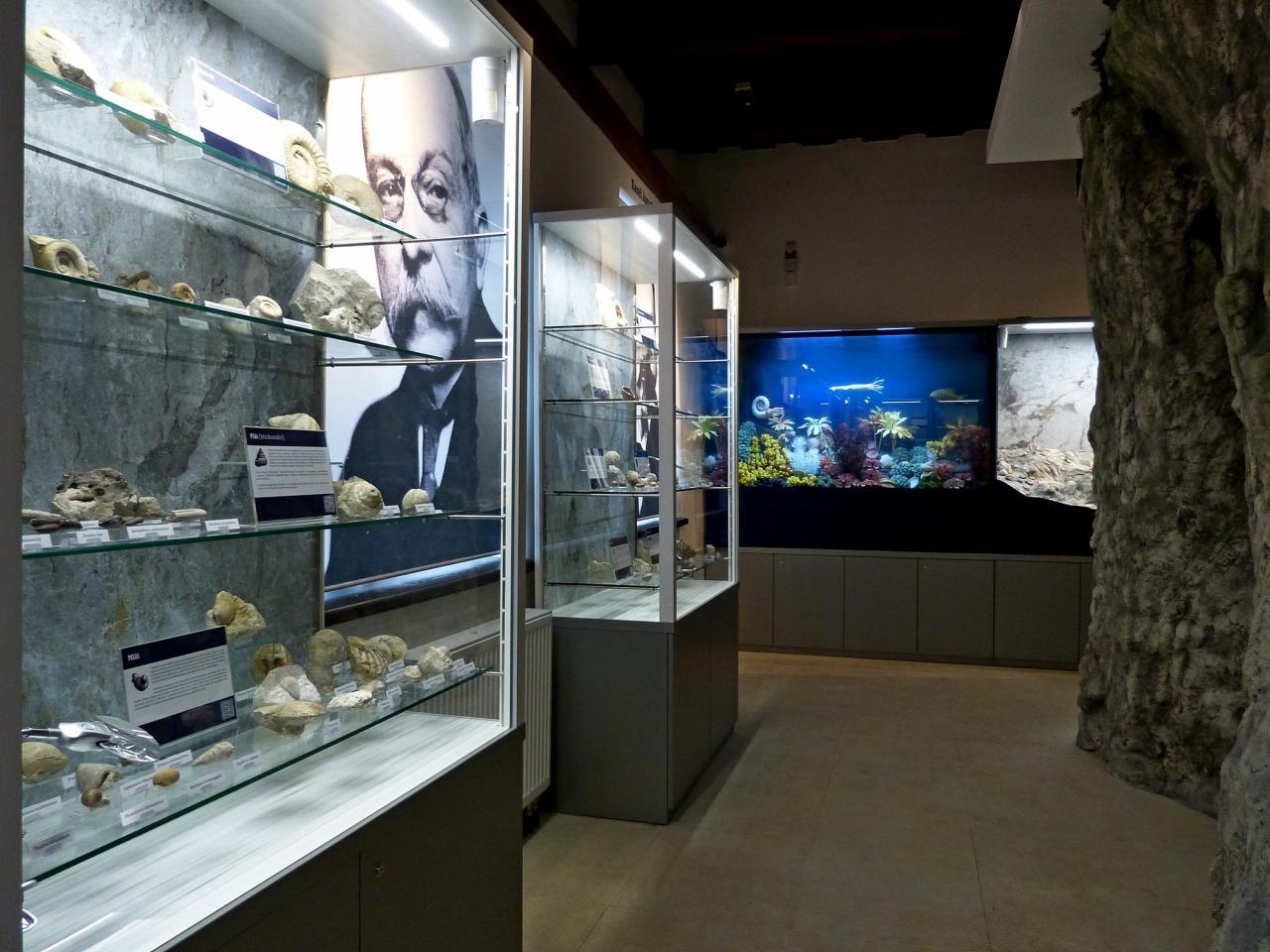 Den otevřených dveří v Muzeu Šipka