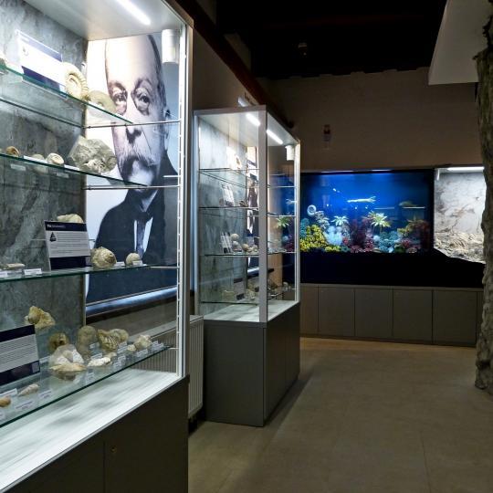 Den otevřených dveří v Muzeu Šipka 1
